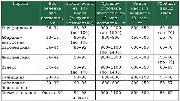 показатели пород мясного скота в россии